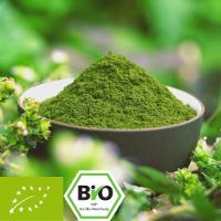 Bio-Gerstengras-Pulver